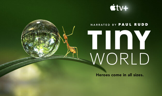 Tiny world – il trailer della serie apple tv+