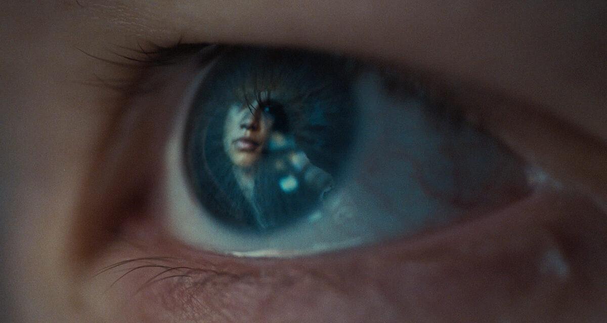 Euphoria, Trouble Don't Last Always – il trailer italiano dello speciale