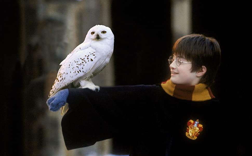 Harry Potter – Una serie in sviluppo per HBO Max?